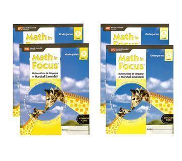 Imagen de MATH IN FOCUS A y B (ENG)